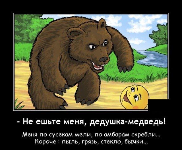 Демотиватор про медведя