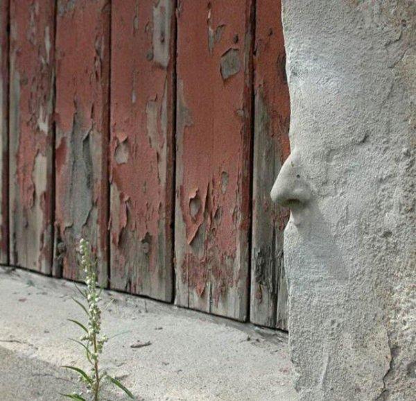 У стен есть не только глаза и уши, но и нос