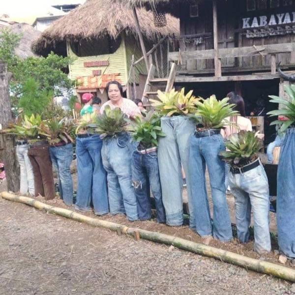 Цветы в джинсах