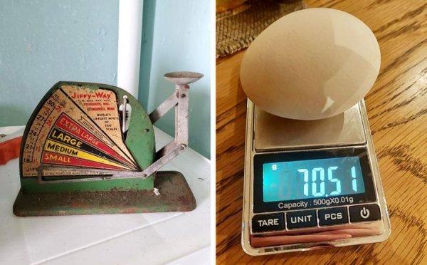 Винтажные и современные весы для яиц