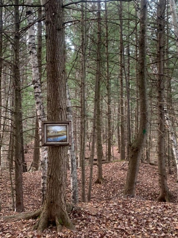 Одинокая картина в лесу