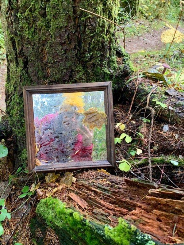Кто-то оставил зеркало посреди леса