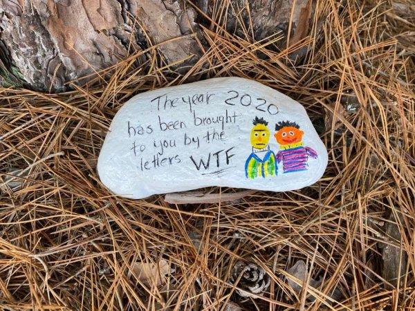 """На камне оставили послание: """"2020-й год познакомил нас с тремя буквами WTF"""""""