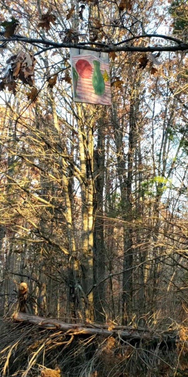 Ещё одна случайная картина посреди леса