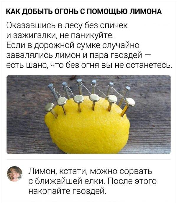 комментарий про лимон