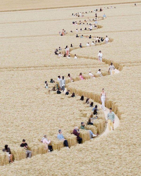 Показ мод на пшеничном поле с социальным дистанцированием