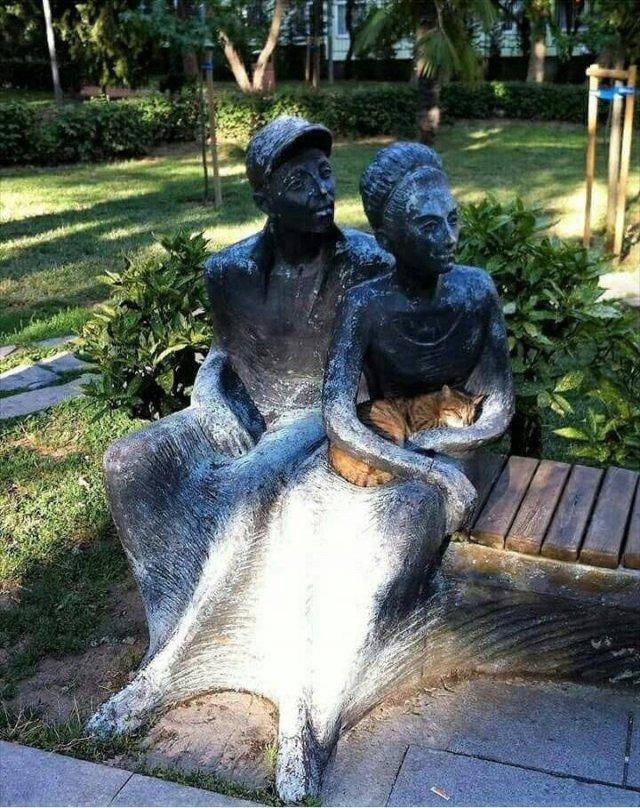 Кот и статуя