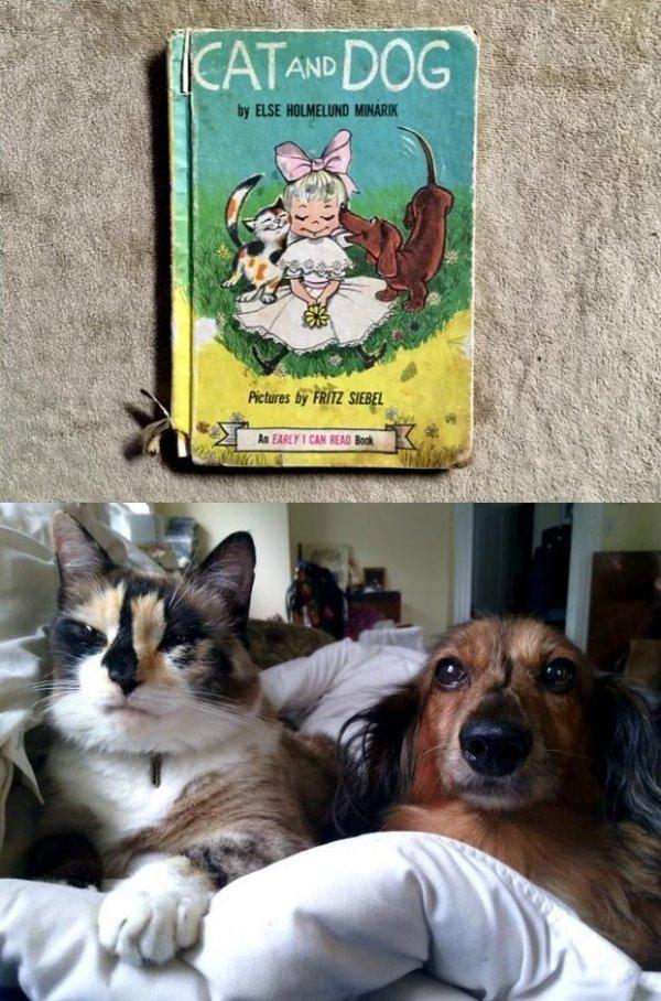 Будто герои детской книжки сошли с обложки в реальный мир