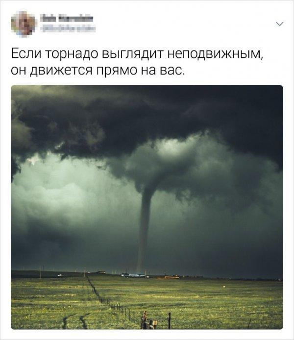 твит про торнадо