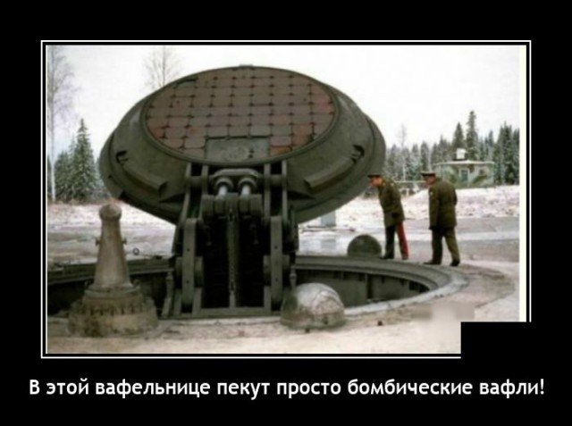 204082_1_trinixy_ru.jpg