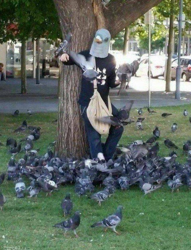 С маской голубя на голове