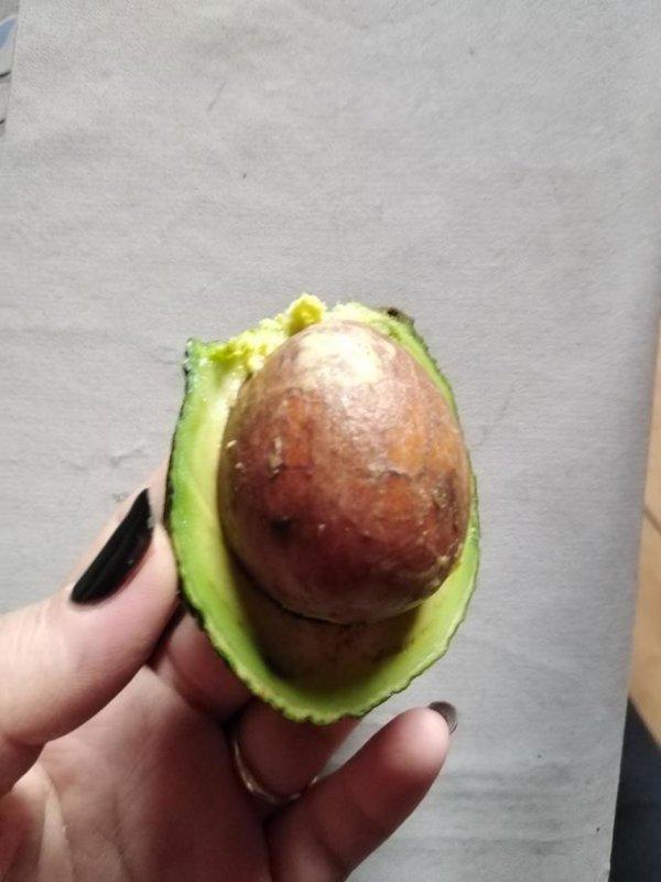 Если бы 2020 год был авокадо