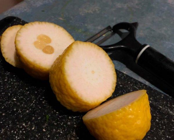 Если бы 2020 год был лимоном