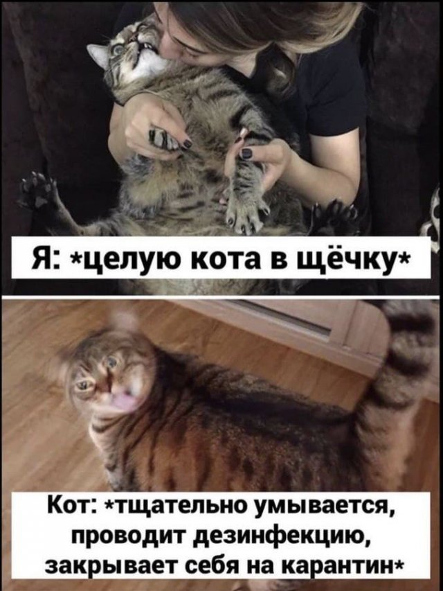 Мемы и картинки о коронавирусе