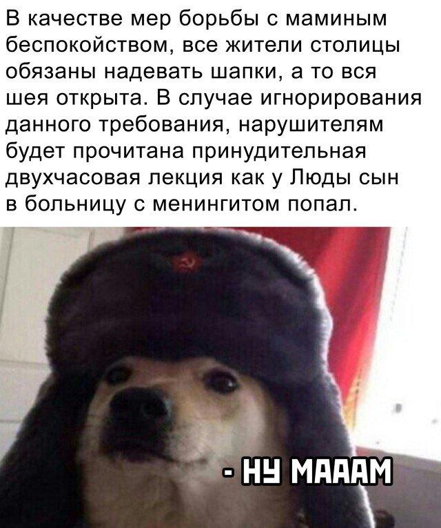 Рассказ про шапку зимой