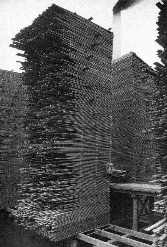 Кедровая лесопилка в Калифорнии, 1919 год.