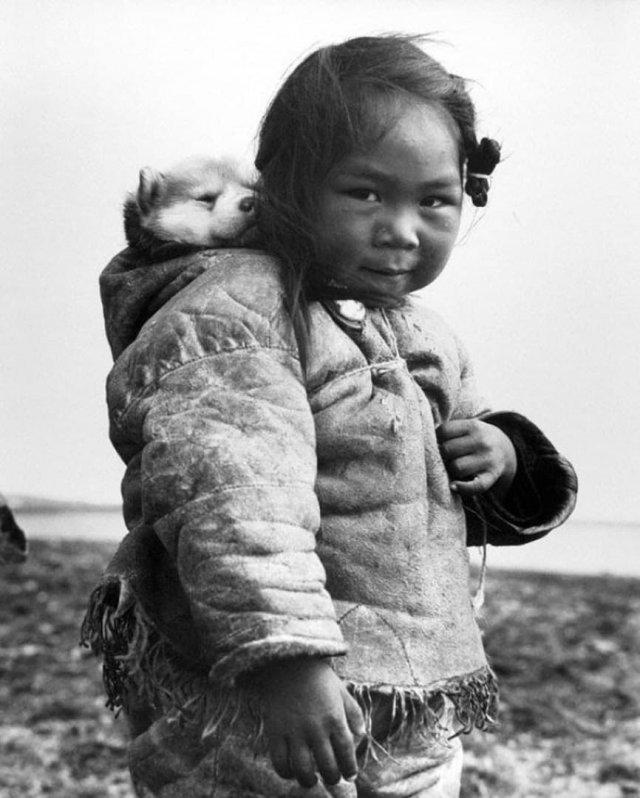 Маленькая эскимоска и ее хаски, 1949 год