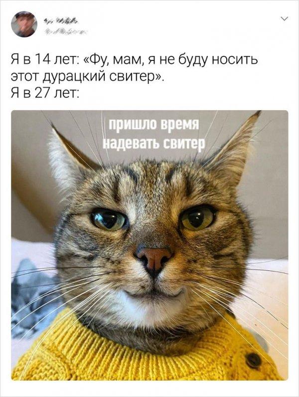 твит про свитер