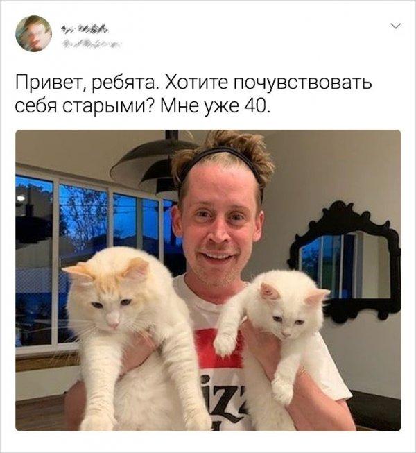 твит от Маколея Калкина