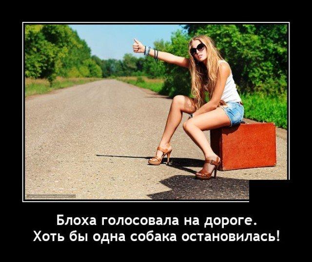 Демотиватор про автостопщиков