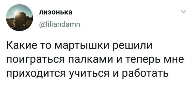 твит про мартышек