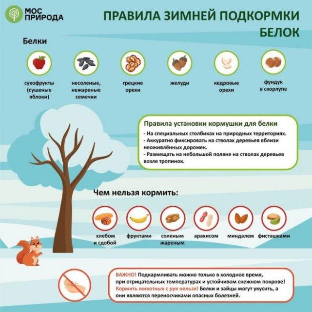 Как кормить животных зимой?