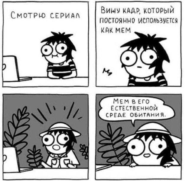 Мемы и сериалы