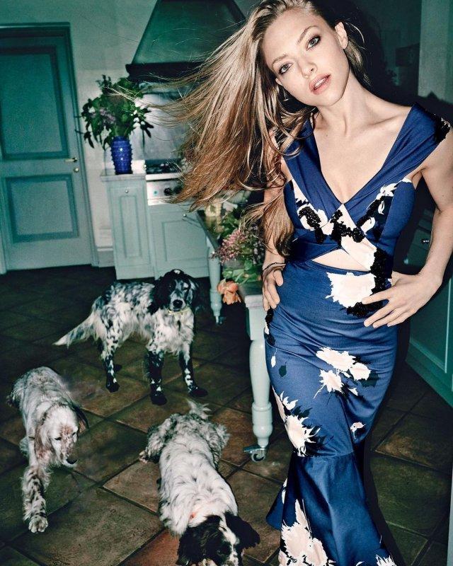 Аманда Сейфрид с собаками