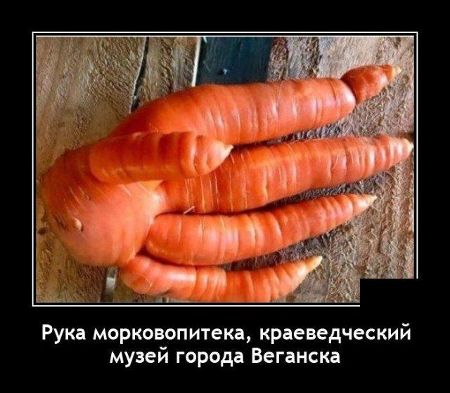 Демотиватор про морковь