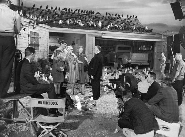 """Павильонная атмосфера съёмок фильма """"Птицы"""" (1963) напоминает ситком"""