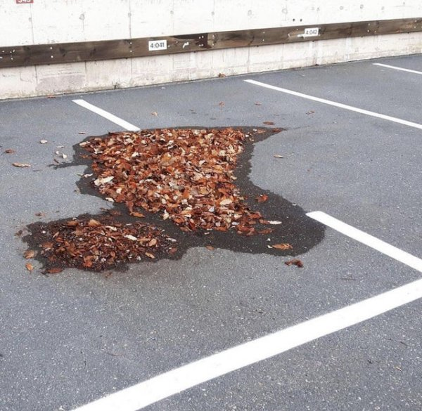 Куча листьев - непреодолимая преграда