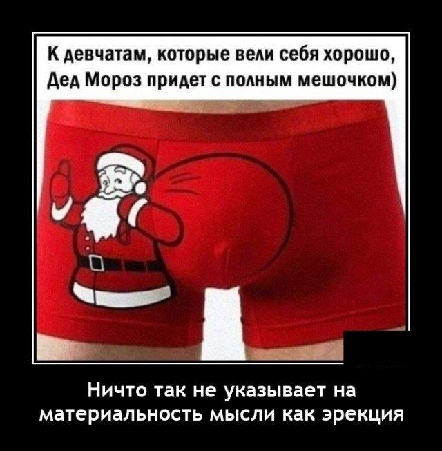 205194_15_trinixy_ru.jpg