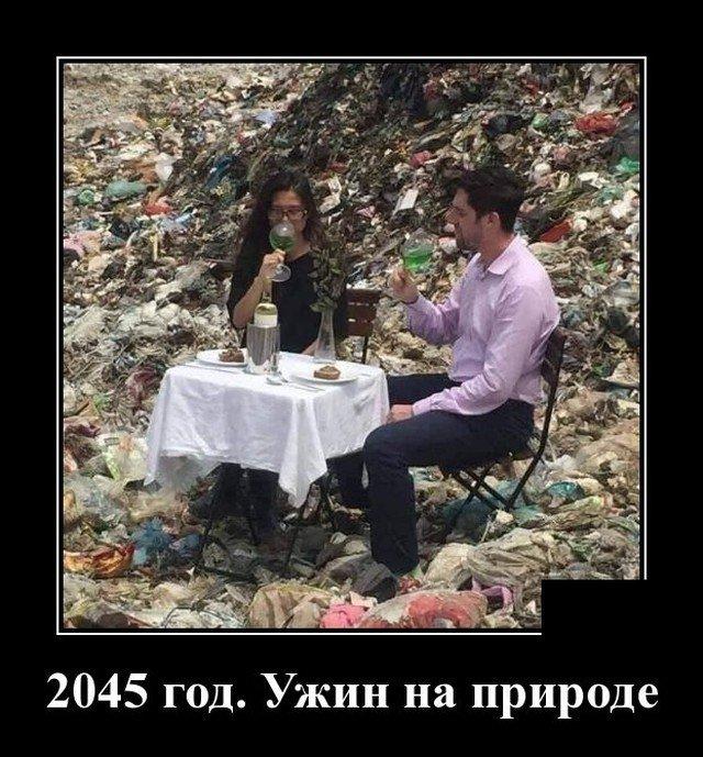205194_20_trinixy_ru.jpg