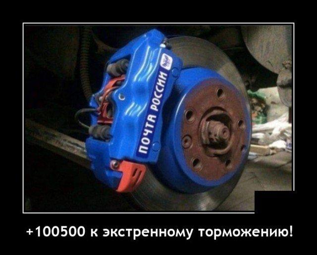205194_5_trinixy_ru.jpg