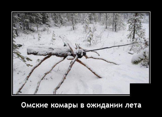 205194_7_trinixy_ru.jpg