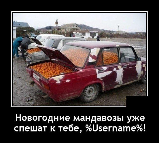 Демотиватор про мандарины