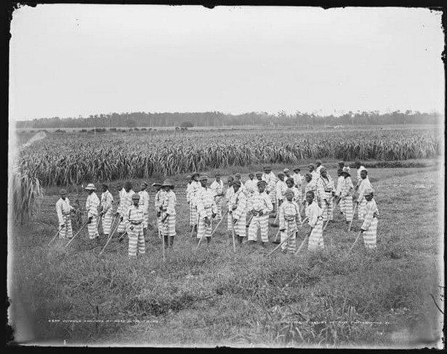 Темнокожие подростки-сироты до конца 60-х де-юре считались потенциально опасными и их содержали как арестантов на государственных фермах, где они работали до 16 лет без какой-либо оплаты, за еду.