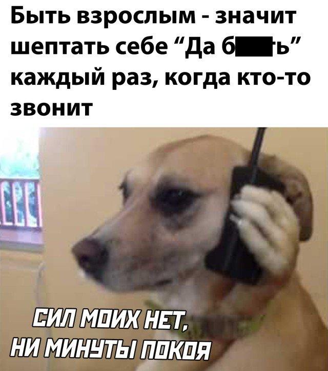 Каждый раз когда кто-то звонит