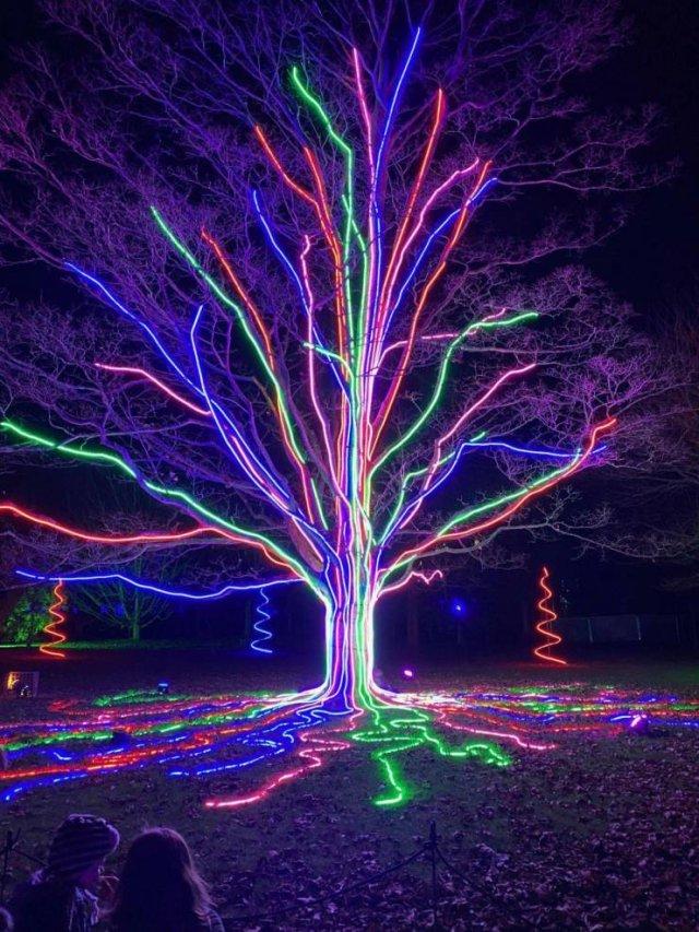 Украшение дерева