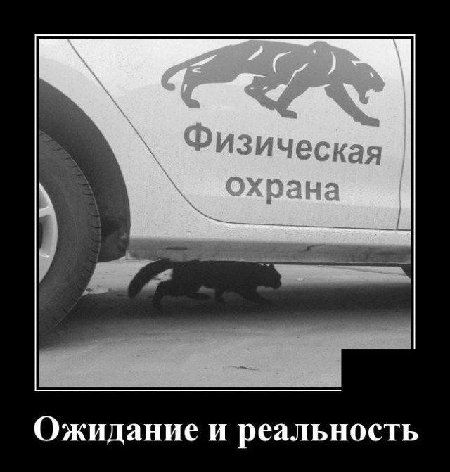 Демотиватор про охрану