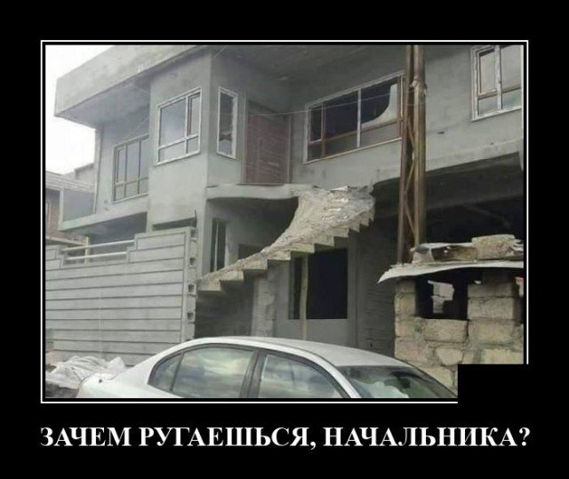 205547_10_trinixy_ru.jpg