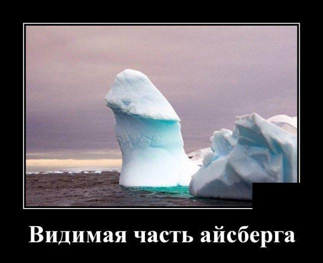 205547_4_trinixy_ru.jpg