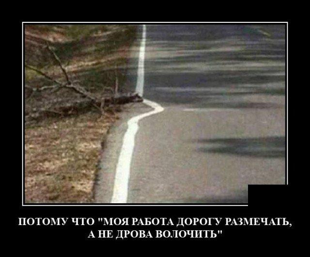 205547_8_trinixy_ru.jpg