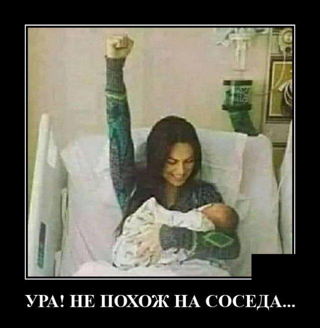 205547_9_trinixy_ru.jpg