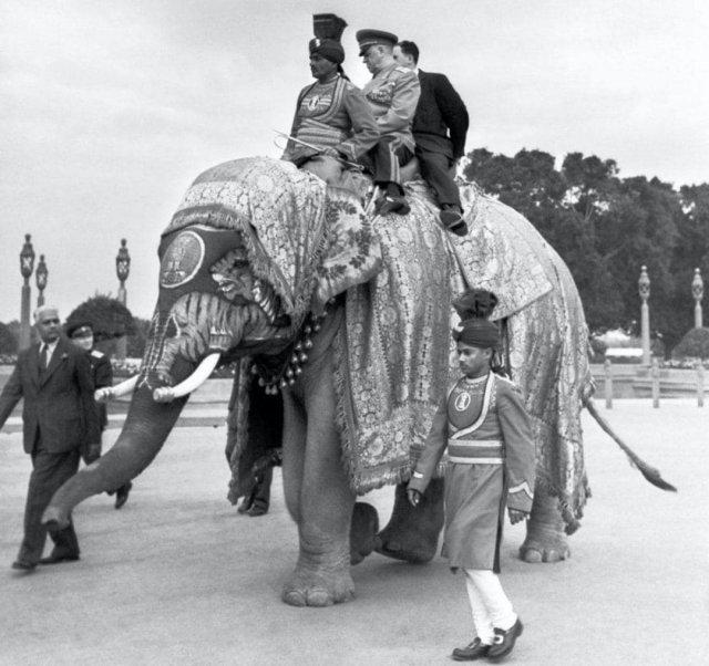 Маршал Жуков на слоне во время дипломатического визита в Индию, Дели, 1957 год