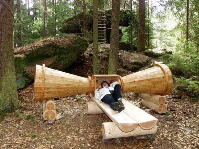 Отдых на природе в лесу