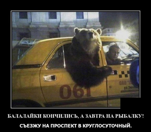 Демотиватор про медведя в такси
