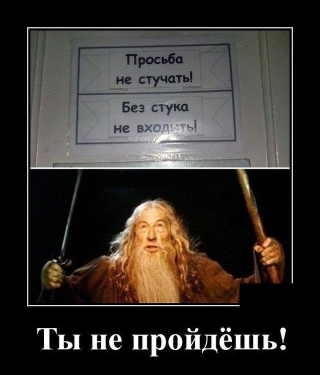 205921_12_trinixy_ru.jpg
