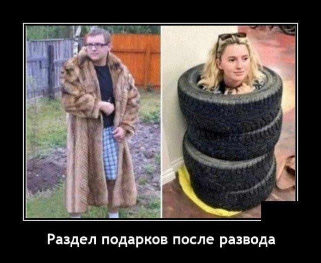 205921_13_trinixy_ru.jpg