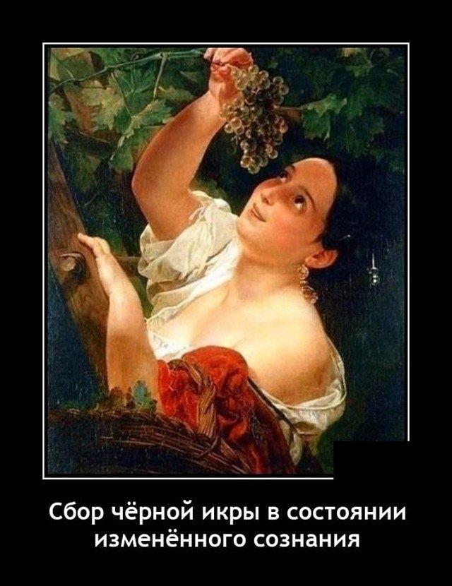 205921_18_trinixy_ru.jpg